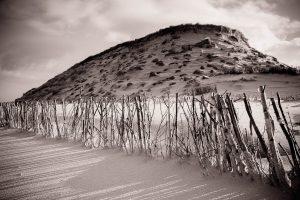 Birkenstöcke - Lahnung vor Weißdüne an der Odde