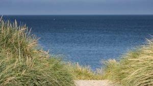 Ausblick durch die Dünen auf die Nordsee