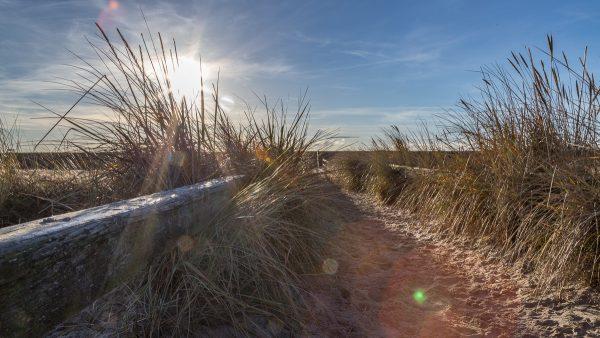 Sonnenaufgang am Strandübergang Hungerham