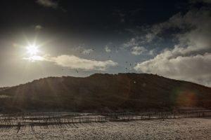 Sonnenaufgang über den Dünen von Amrum