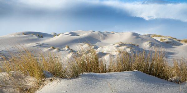 Winterliche Dünenlandschaft am Morgen