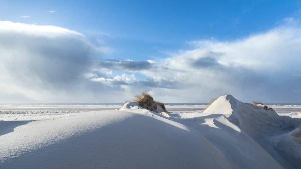 Weißdüne auf Amrum