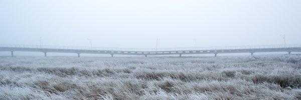 Die Seebrücke im Nebel