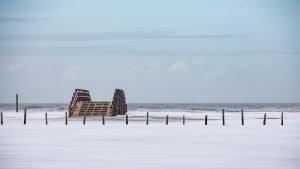 Das verlassene Bootshaus