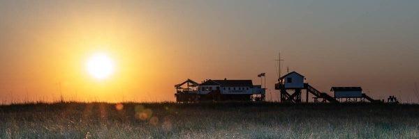 Sonnenuntergang auf der Salzwiese MK_2018-32-_1MK5816