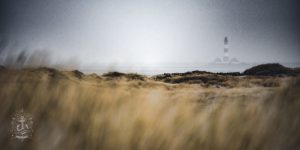 Dünenkette vor dem Westerhever Leuchtturm