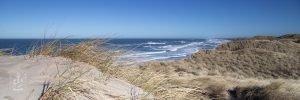 Küste von Vorupor DK