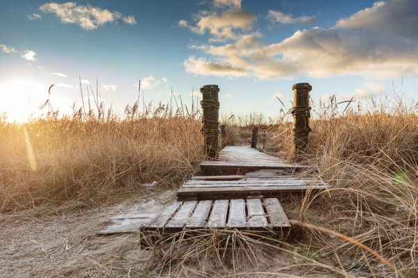 Wir lieben das Morgenlicht. Aalbek Dänemark Ostsee-Seite