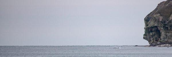 Nordjütland - Bulbjerg Klint No. II