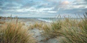 Nordjütland – Skagen Greenen No. VII
