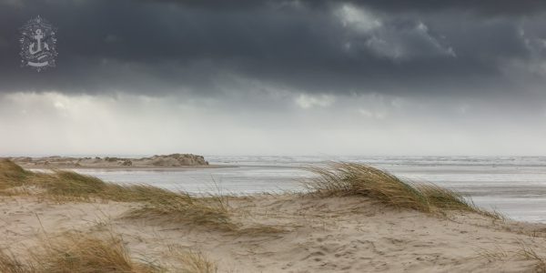Fanø Nordby – Dünen & Strand No. XII