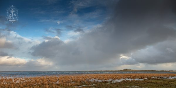 Fanø Sønderho – Wattenmeer No. XIV