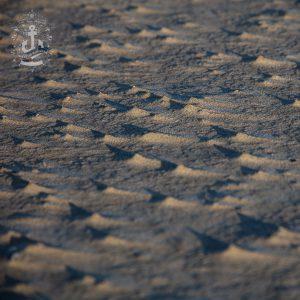 St Peter-Ording – Sand & Schatten No. XXXIV