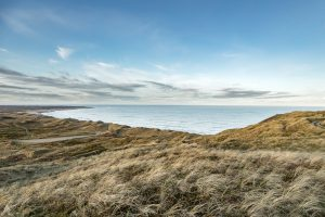 Nordjütland – Bulbjerg Dünen No. VI
