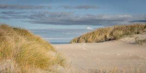 Nordjütland Grønne Strand – Dünen No. VI