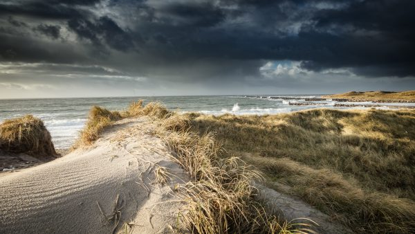 Nordjütland Agger – Dünen No. IX
