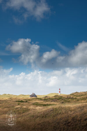 Sylt - List - Dünen am Leuchtturm List West No. V